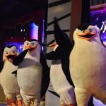 Ahhh, os pinguins de Madagascar. #amo