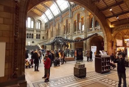Toda a beleza da natureza neste museu em Londres