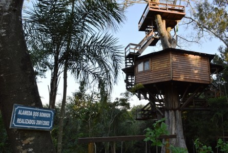 Casa na árvore: uma hospedagem inusitada